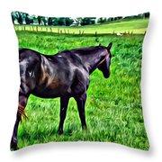 Black Stallion In Pasture Throw Pillow