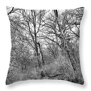 Black Stream Throw Pillow