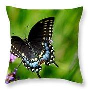 Black Swallowtail Butterfly In Garden Throw Pillow