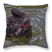 Black Swan Gladys Porter Zoo Texas Throw Pillow
