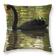 Black Swan Series II Throw Pillow
