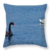 Black Swan White Swan Throw Pillow