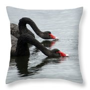 Black Swans Australia Throw Pillow