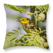 Black-throated Gren Warbler Throw Pillow