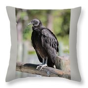 Black Vulture On The Boardwalk Throw Pillow