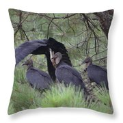 Black Vultures II Throw Pillow