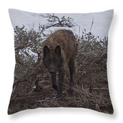 Black Wolf   #1678 Throw Pillow