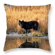 Black Wolf Reflection Throw Pillow