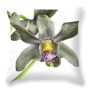 Black Yellow And Purple Orchid Throw Pillow