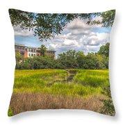 Blackbaud Corp Throw Pillow