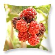 Blackberries Ripening Throw Pillow