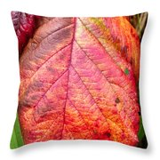 Blackberry Leaf In The Fall 3 Throw Pillow