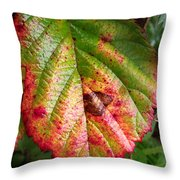 Blackberry Leaf In The Fall 4 Throw Pillow