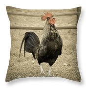 Blackbird Crowing Throw Pillow