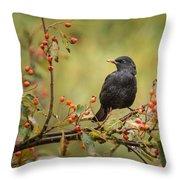 Blackbird On Branch Throw Pillow