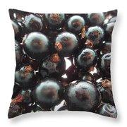 Blackcurrant Affairs Throw Pillow