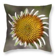 Blacksamson Echinacea Throw Pillow