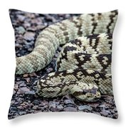 Blacktailed Rattlesnake Throw Pillow