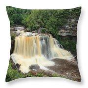 Blackwater River Falls West Virginia Throw Pillow