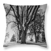 Blanco Y Negro Throw Pillow