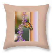 Blank Greeting Card 3 Throw Pillow