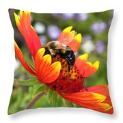 Blanket Flower And Bumblebee Throw Pillow