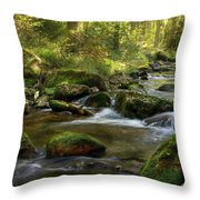 Blauental Throw Pillow