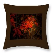 Blaze Of Leaves Throw Pillow
