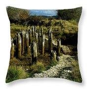 Blazing A New Trail  Throw Pillow