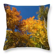 Blazing Autumn Colors - Just Lift Your Head Throw Pillow