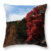 Blazing Maple Tree Throw Pillow