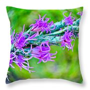 Blazing Star Throw Pillow