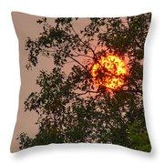 Blazing Sun Hiding Behind A Tree Throw Pillow