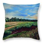 Blazing Sun On Farmland Throw Pillow