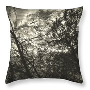 Bleak Throw Pillow