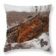Bleak Winter Arctic Steppe Orange Lichens Rock Throw Pillow