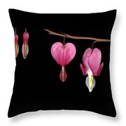 Bleeding Heart Flowers Showing Blooming Stages  Throw Pillow