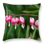 Bleeding Hearts All In A Row Throw Pillow