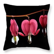 Bleeding Hearts Throw Pillow