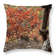 Blended Colors. Throw Pillow