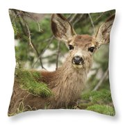 Blending In The Pines Throw Pillow