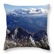 Blessed Beauty Throw Pillow