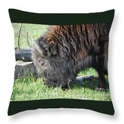 Blessed Bull Throw Pillow