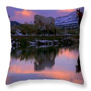 Blessings And Joy  Throw Pillow