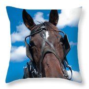 Blinders Because All Distractions Are Equal Throw Pillow