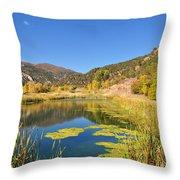 Beauty In Colorado Throw Pillow