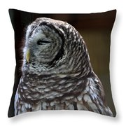 Blissful Throw Pillow by April Wietrecki Green