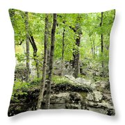 Blissfully Peaceful Throw Pillow