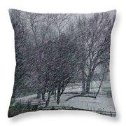 Blizzard 2013 Throw Pillow