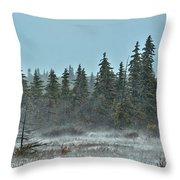 Blizzard Conditions Throw Pillow